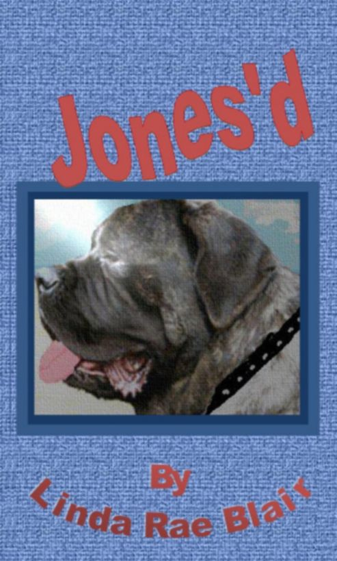 Jones'd - #12 of The Preston Andrews Mysteries