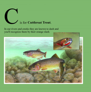 C is for Cutthroat Trout